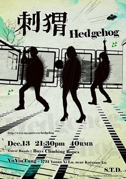hedgehog flyer
